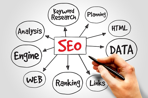 Colorado SEO Expert and Organic SEO Expert
