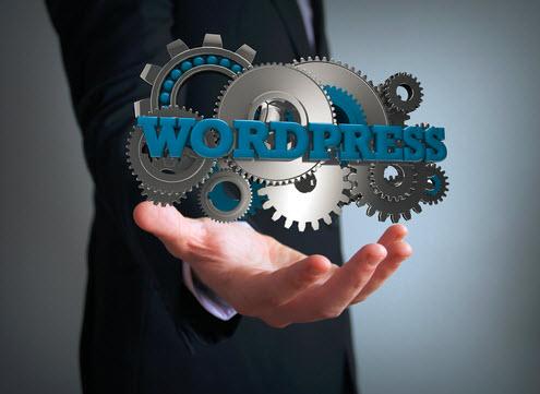 WordPress SEO Expert Kevin Yeaman